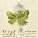 Il Mercato dei vini FIVI arriva a Roma