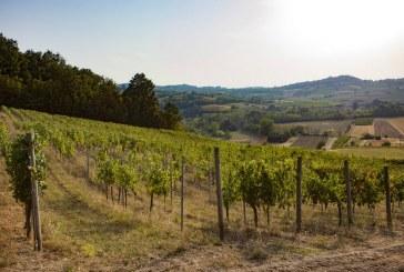 Le Cantine Volpi bio dei Colli Tortonesi alla settimana dei vini a Milano