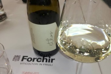 Ethos il vino nuovo che va oltre il biologico del bere naturale