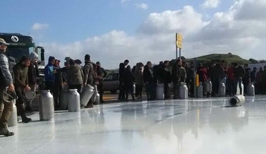 Photo of Protesta dei pastori sardi: meglio buttare il latte che svenderlo