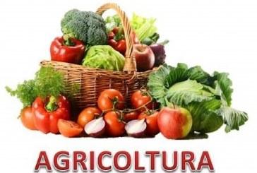 Rinnovato il contratto per i lavoratori in agricoltura nel Friuli Venezia Giulia