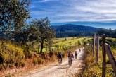 Mai cicloturismo senza tappe enogastronomiche