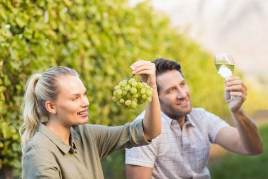 I vignaioli felici fanno vino buono, Vinitaly insegna