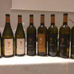 Omina Romana, il volto internazionale della viticultura Laziale