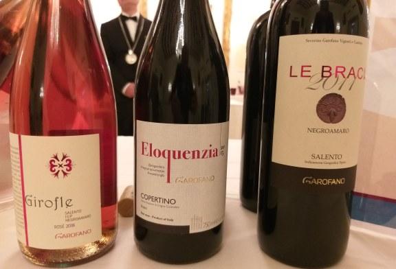 Mieru 2019 l'incontro di Roma con il Negroamaro e la viticultura Salentina