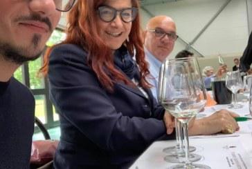 I risultati del concorso  enologico internazionale Serendipity wines