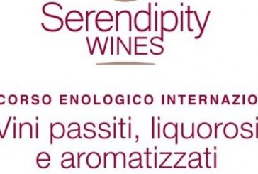 Serendipity Wines, un concorso per eccellenze