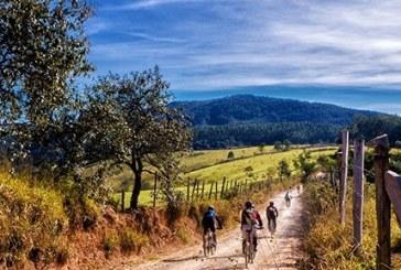 Di vigna in vigna, di vino in vino, l'Italia del cicloturismo enologico