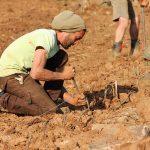 Solaris, Bronner, Johanniter le nuove sfide del vino Trentino