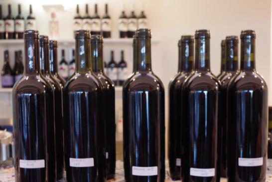 La degustazione dei Vini Sperimentali di Sicilia