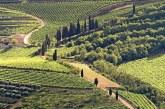 Da paesaggio a patrimonio: continua il percorso del Soave