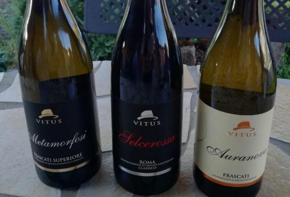 "I vini Vitus dei Vignaioli Tuscolani inaugurano il format ""Frascati Vino e Città"""
