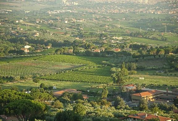 Palcoscenico Frascati IV Edizione  14 – 15 Settembre 2019