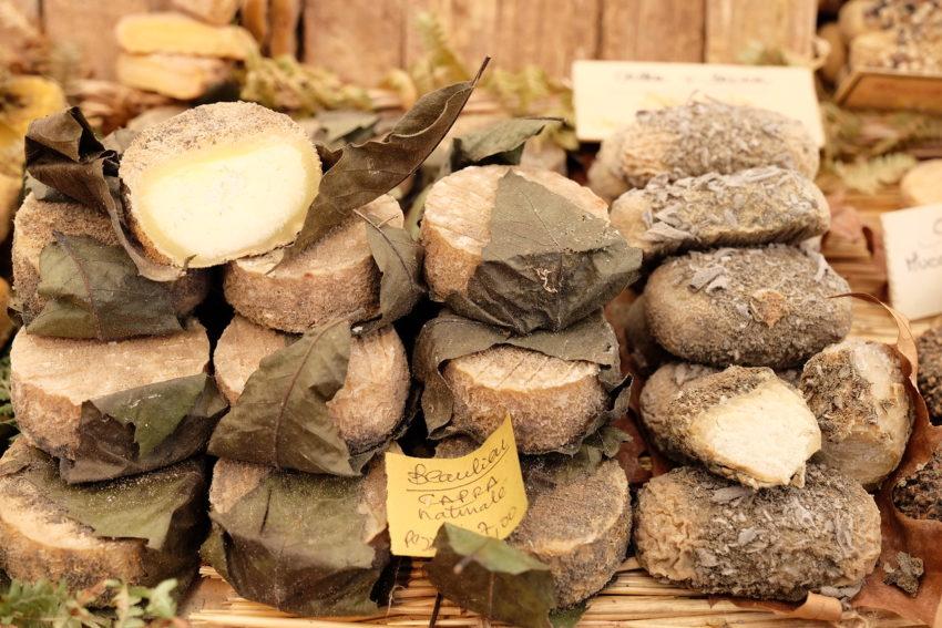 Quello che i Disciplinari sul formaggio dovrebbero dire secondo Slow Food