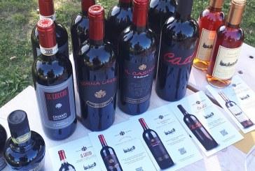 Una degustazione alla Colombara di una azienda vinicola Toscana