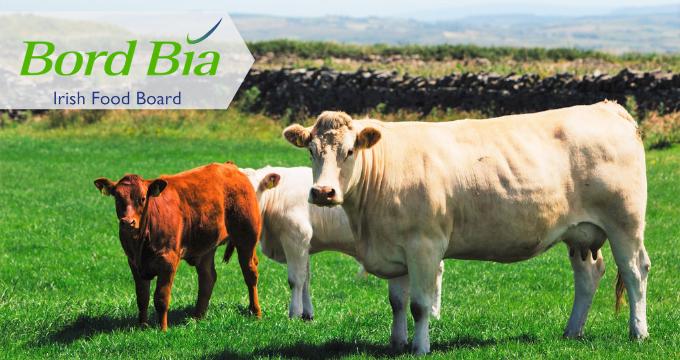 Photo of Carne irlandese apprezzata in Italia e Bord Bia lancia un concorso