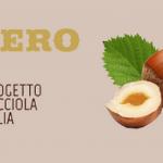 Ferrero investe in nocciole italiane nella Tuscia viterbese