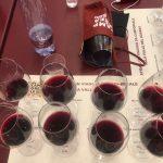Si ripete il miracolo: in una cantina dell'Oltrepo': l'acqua diventa vino