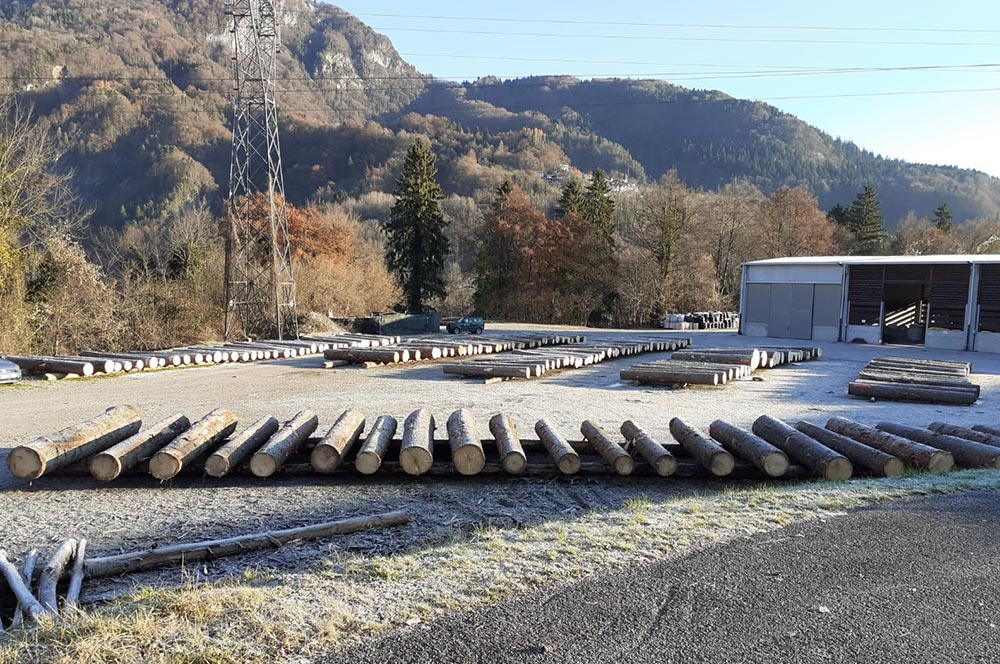 5^ Asta del legname con record, ad Ampezzo