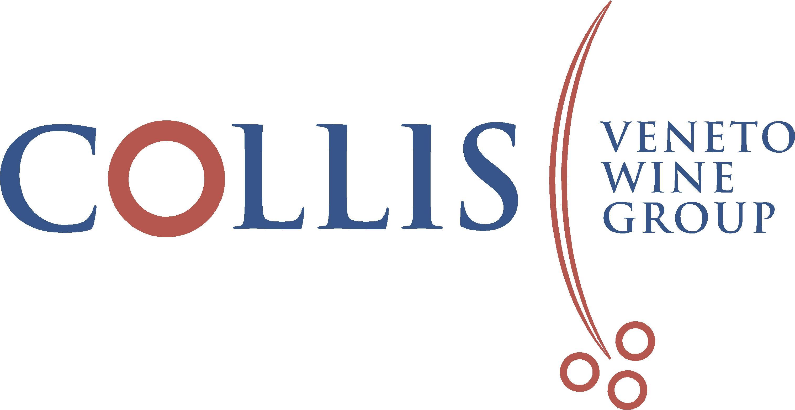 Zambon, nuovo presidente del Gruppo Collis
