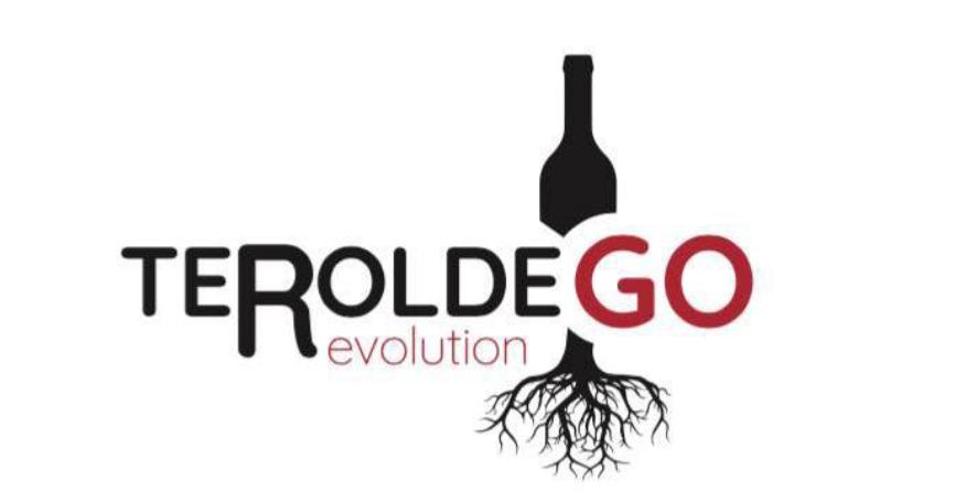 Diversa opinione sul futuro dei vini Trentini