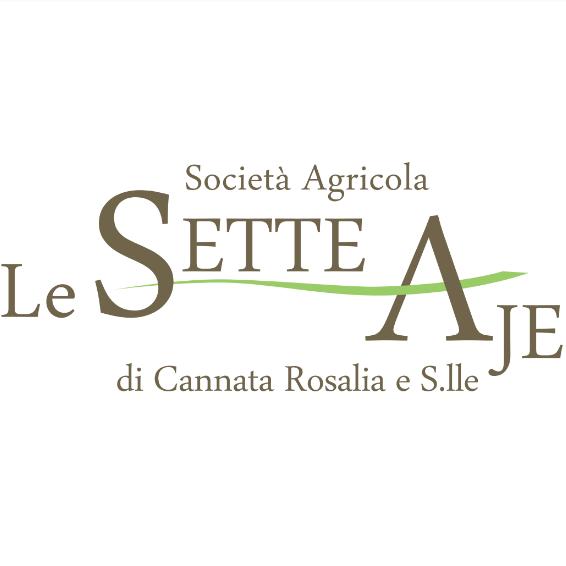 Le Sette Aje – Il vino per tutti Guida ai vini italiani