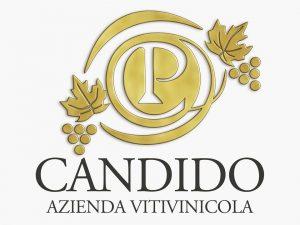 Photo of Il vino per tutti Guida ai vini italiani