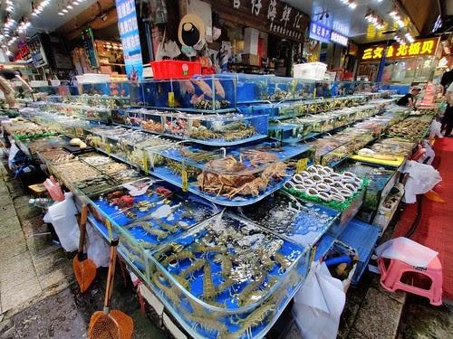 Photo of La Cina vieta l'importazione dei surgelati ritenuti veicolo di contagio