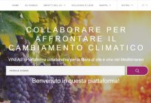 Photo of Vineas piattaforma online per operatori del vino